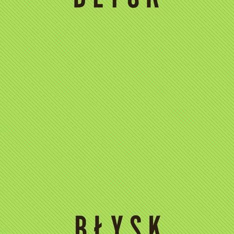 http://www.hey.pl/dyskografia/blysk.jpg